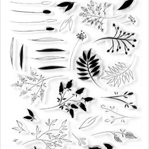 Altenew, Wildflower Doodles stamp set, Australia